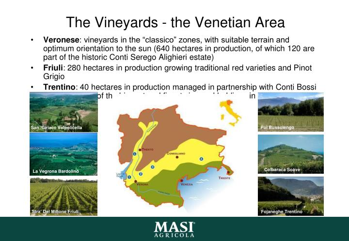 The Vineyards - the Venetian Area