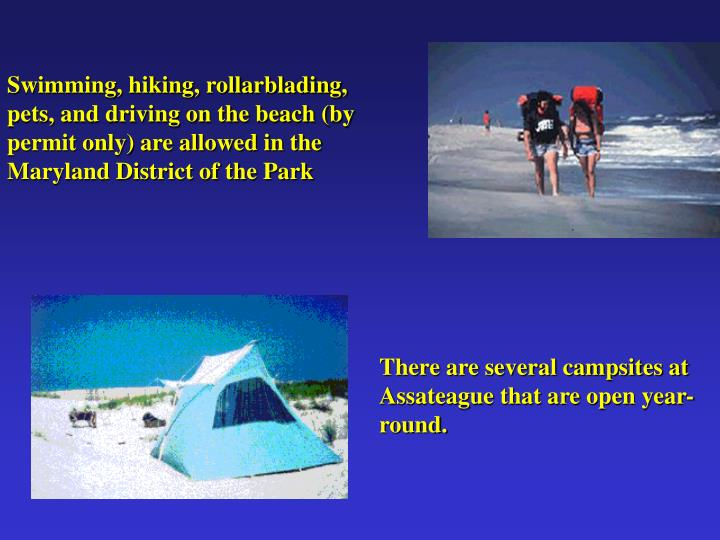 Swimming, hiking, rollarblading, pets, and driving on the beach (by permit only) are allowed in the Maryland District of the Park