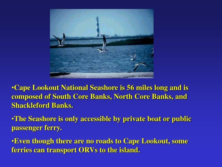 Cape Lookout National Seashore is 56 miles long and is composed of South Core Banks, North Core Banks, and Shackleford Banks.