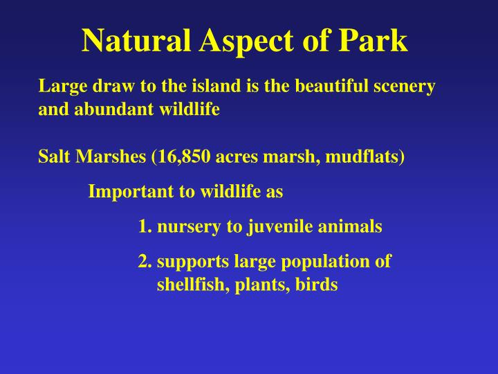 Natural Aspect of Park