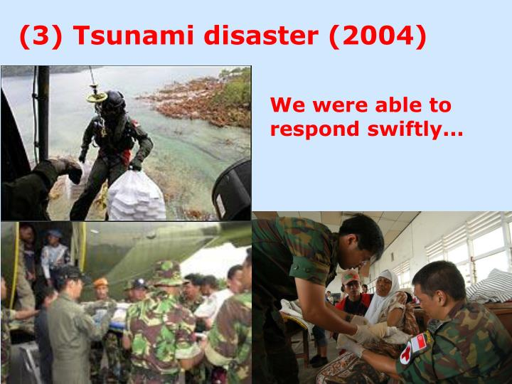 (3) Tsunami disaster (2004)