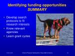 identifying funding opportunities summary