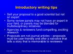 introductory writing tips87