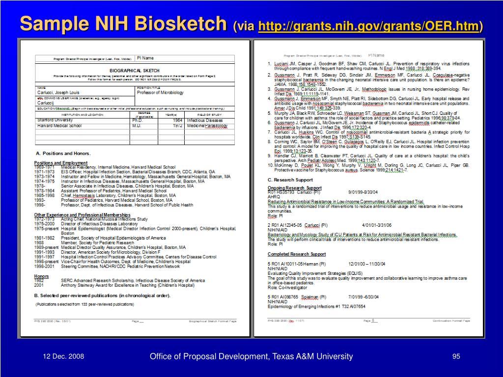 Sample NIH Biosketch