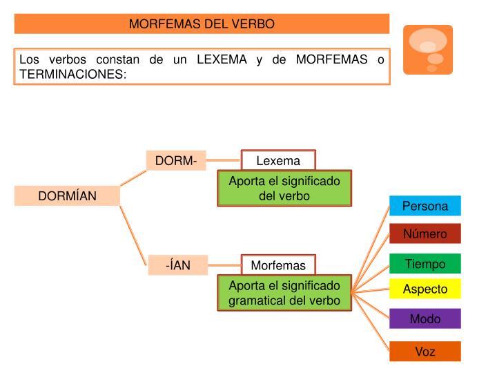 MORFEMAS DEL VERBO