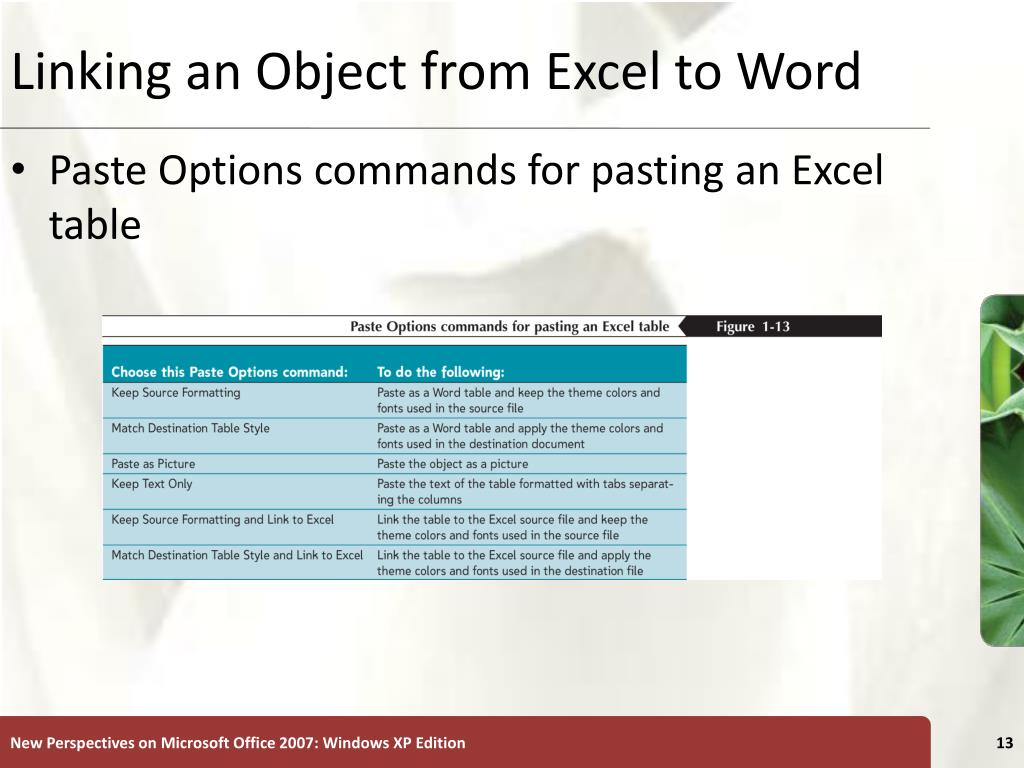Linking an Object from Excel to Word