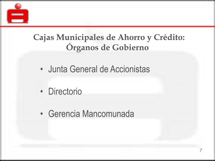 Cajas Municipales de Ahorro y Crédito: Órganos de Gobierno