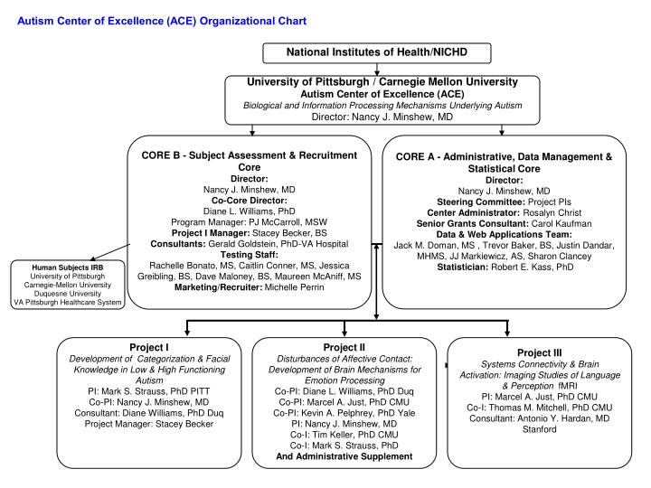 Autism Center of Excellence (ACE) Organizational Chart