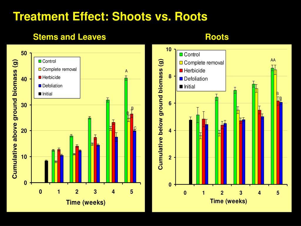 Treatment Effect: Shoots vs. Roots