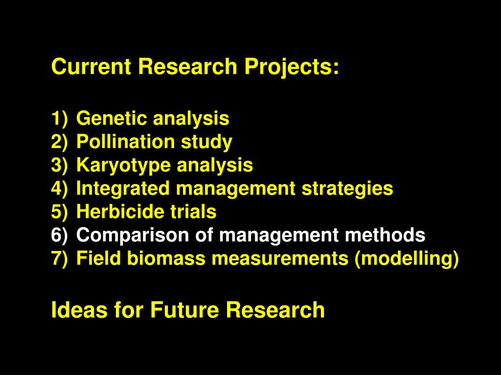 Current Research Projects: