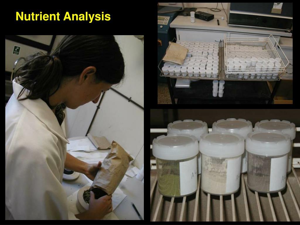Nutrient Analysis