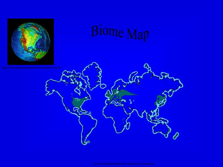 Biome Map