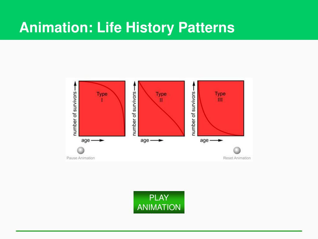 Animation: Life History Patterns
