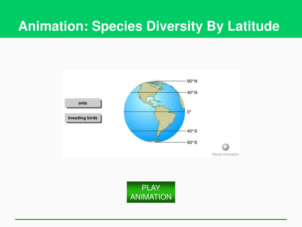 Animation: Species Diversity By Latitude