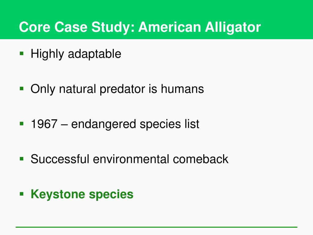 Core Case Study: American Alligator