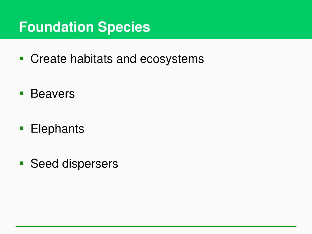 Foundation Species