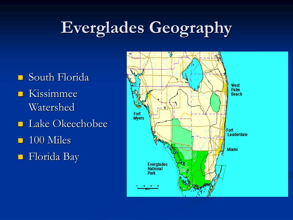 Everglades Geography