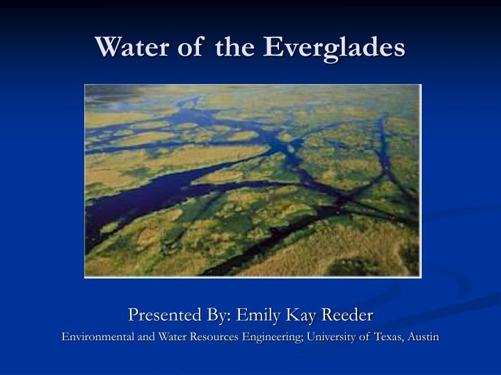 Water of the everglades l.jpg