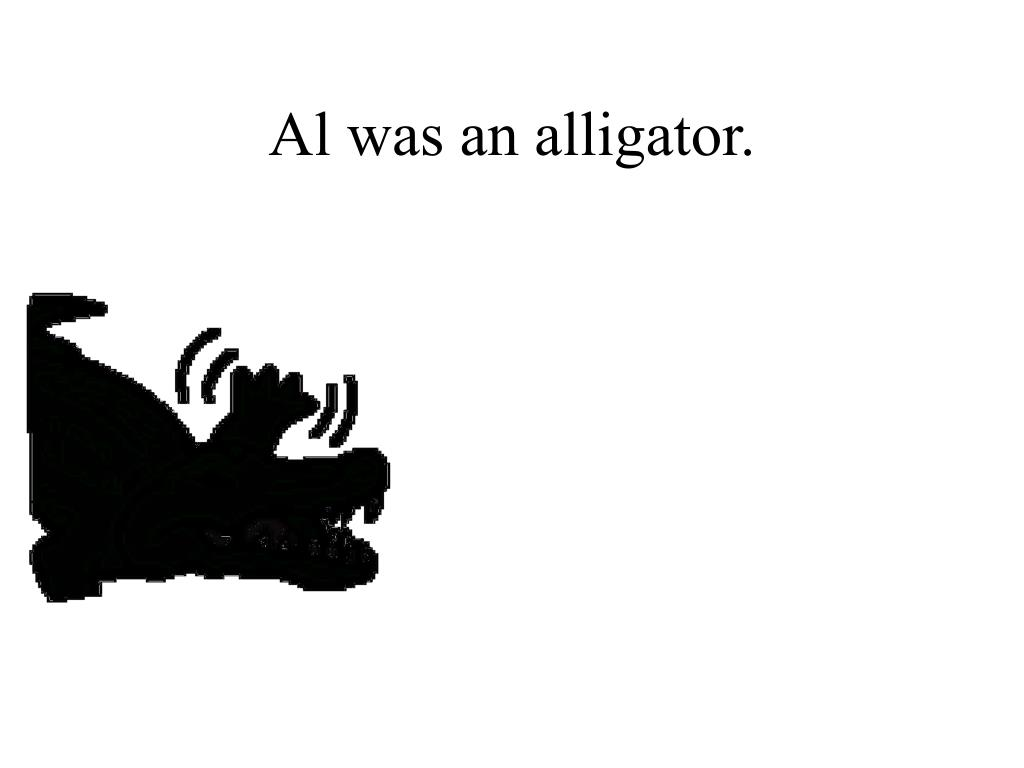 Al was an alligator.