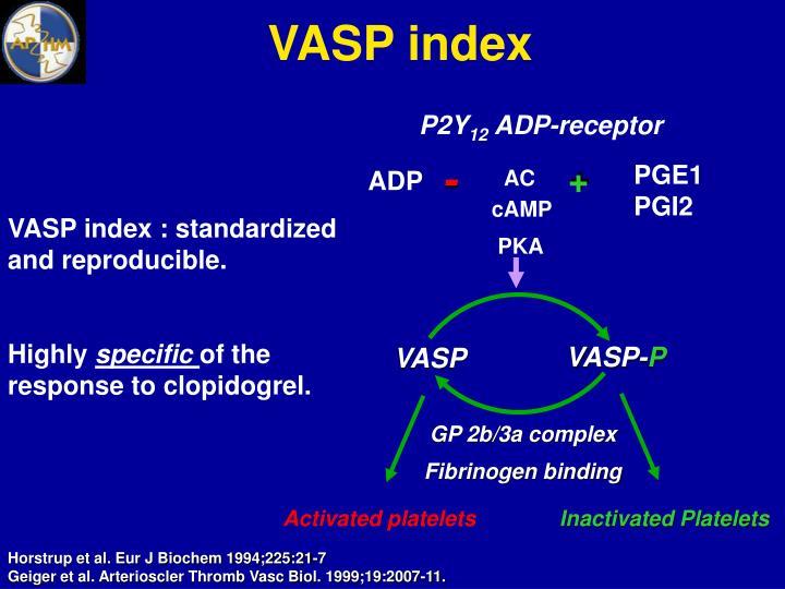 VASP index