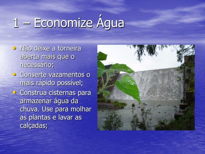 1 – Economize Água
