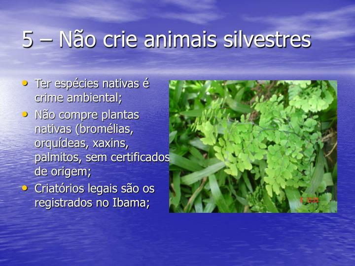 5 – Não crie animais silvestres