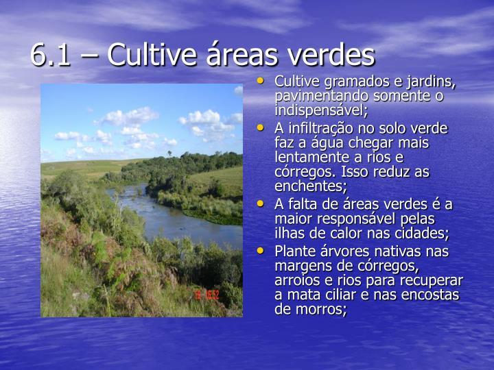 6.1 – Cultive áreas verdes