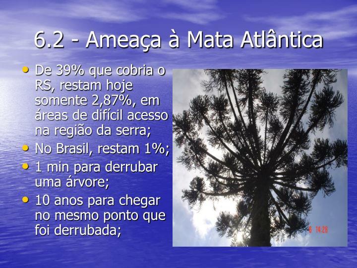 6.2 - Ameaça à Mata Atlântica