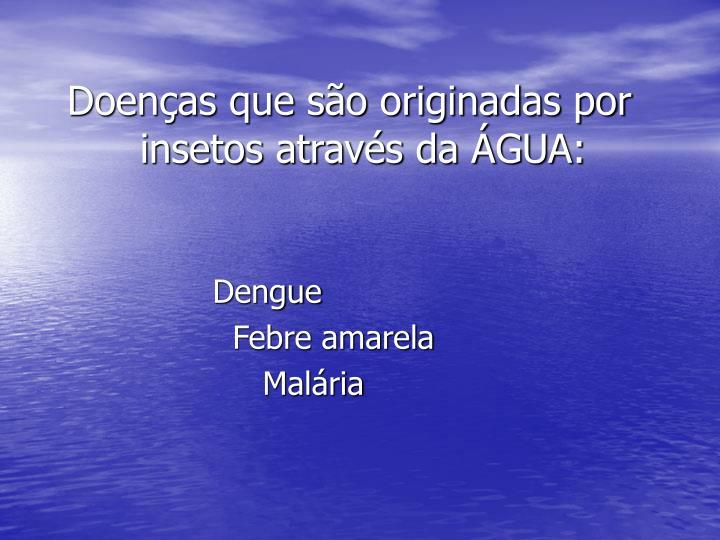 Doenças que são originadas por insetos através da ÁGUA: