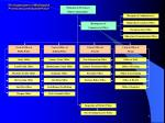 the organization of municipal provincial commissariat police