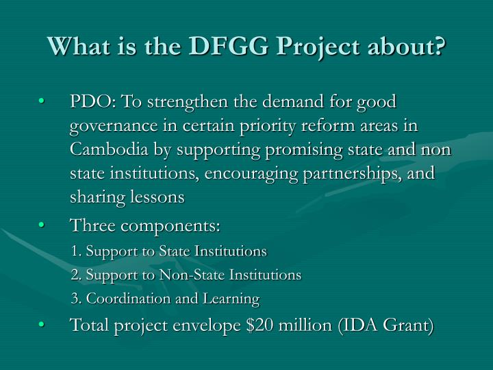 What is the dfgg project about l.jpg