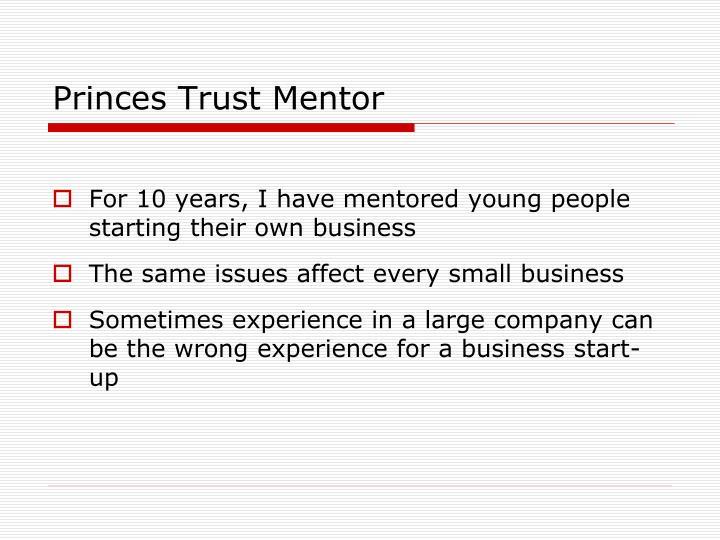 Princes Trust Mentor