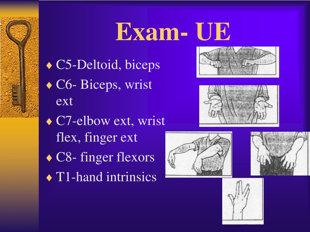 Exam- UE
