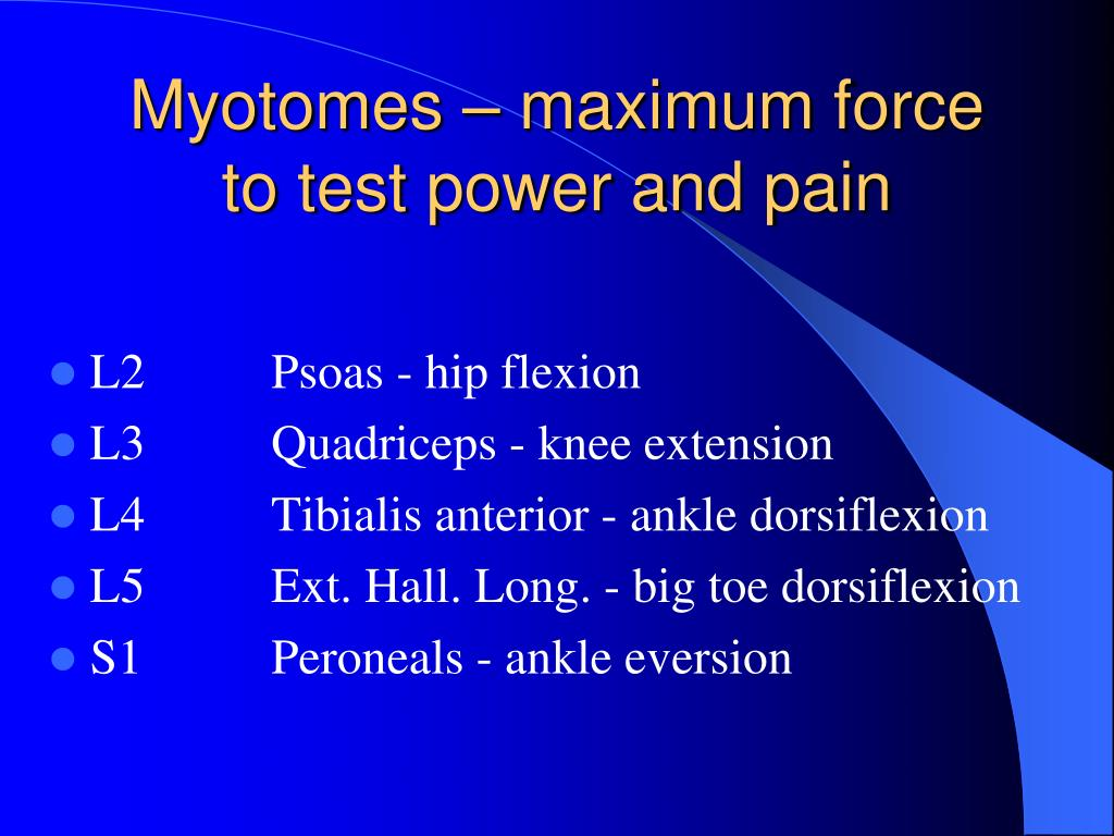 Myotomes – maximum force to test power and pain
