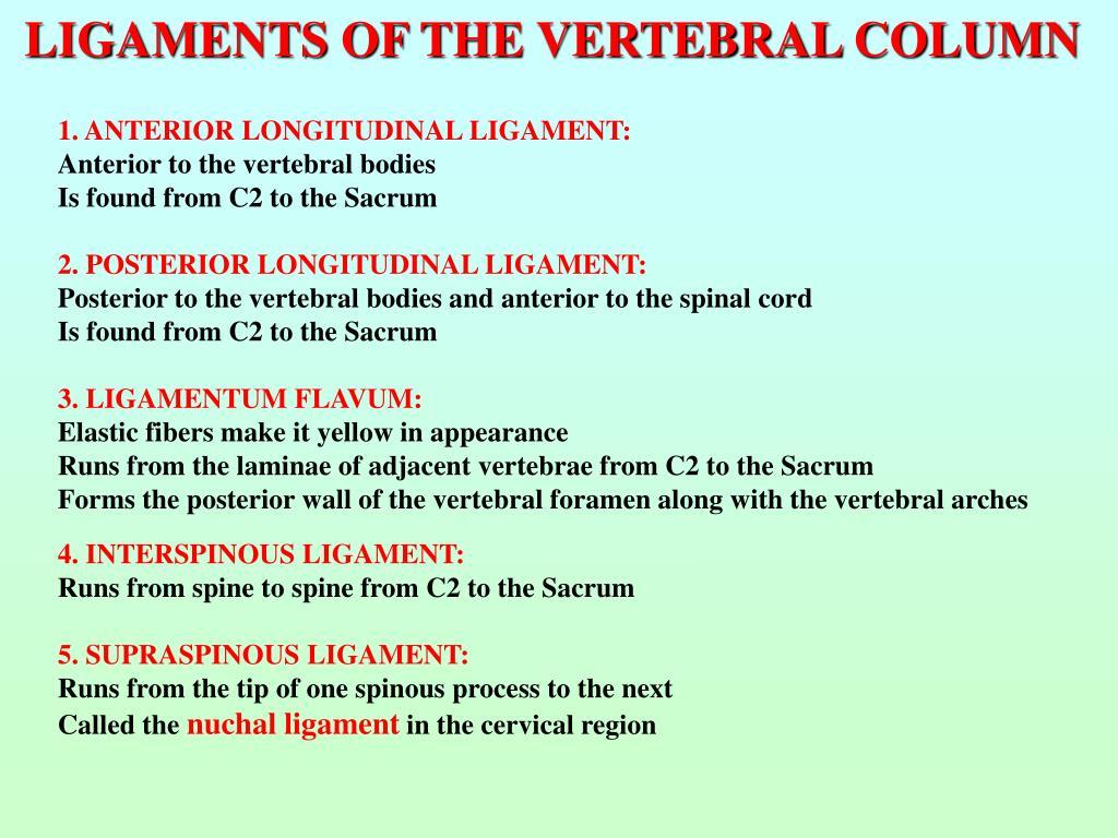 LIGAMENTS OF THE VERTEBRAL COLUMN