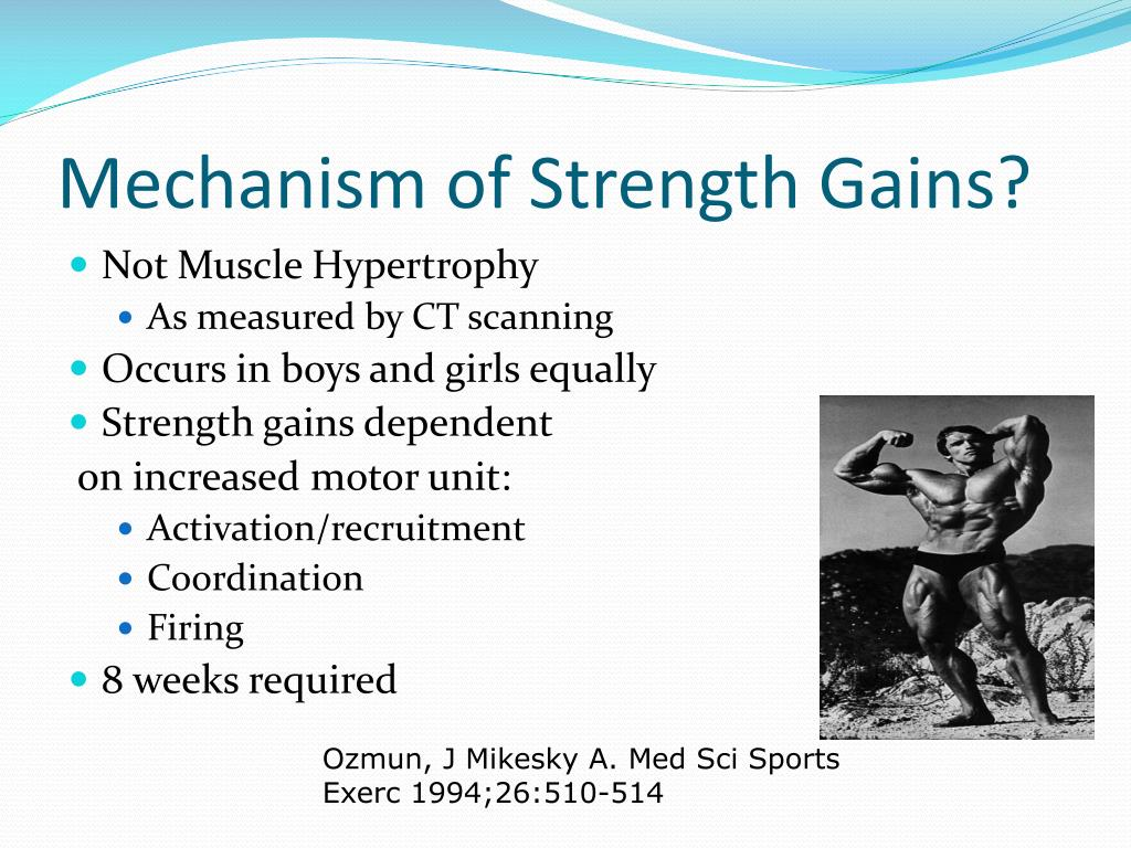 Mechanism of Strength Gains?