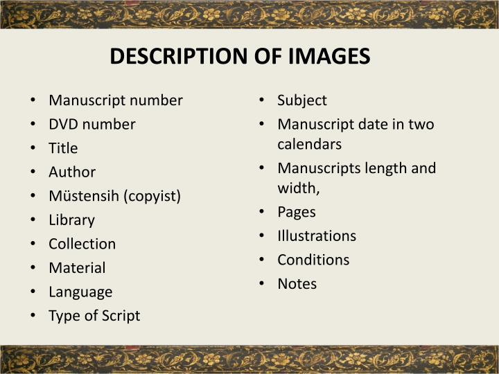 DESCRIPTION OF IMAGES