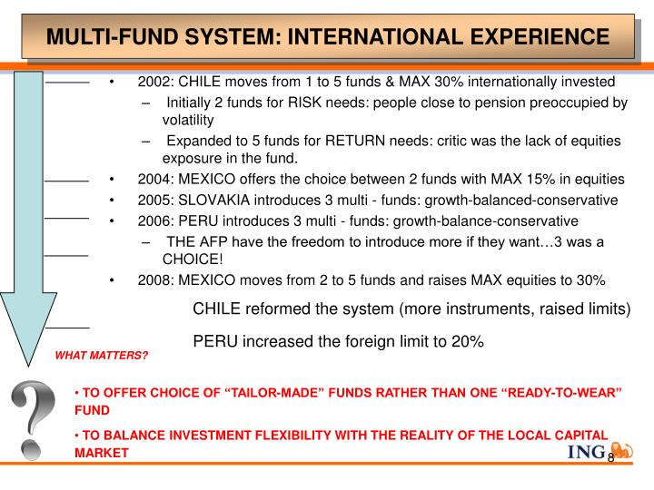 MULTI-FUND SYSTEM: INTERNATIONAL EXPERIENCE