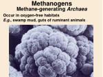 methanogens methane generating archaea