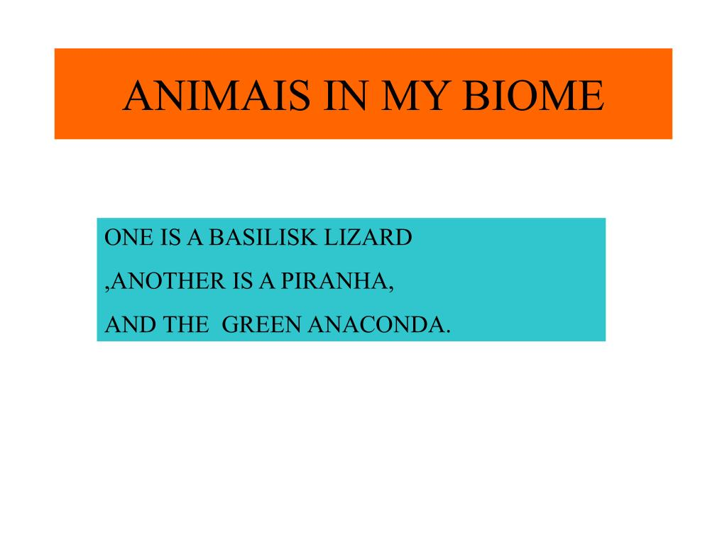 ANIMAIS IN MY BIOME