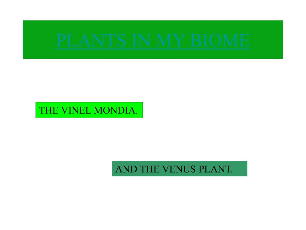 PLANTS IN MY BIOME