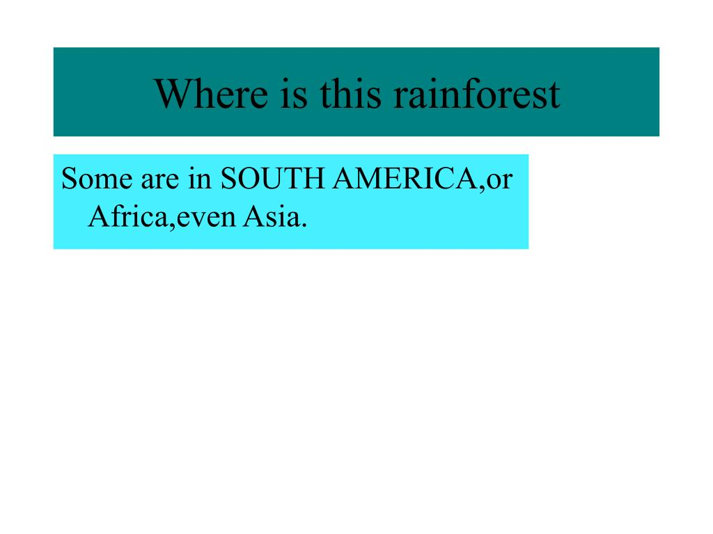 Where is this rainforest