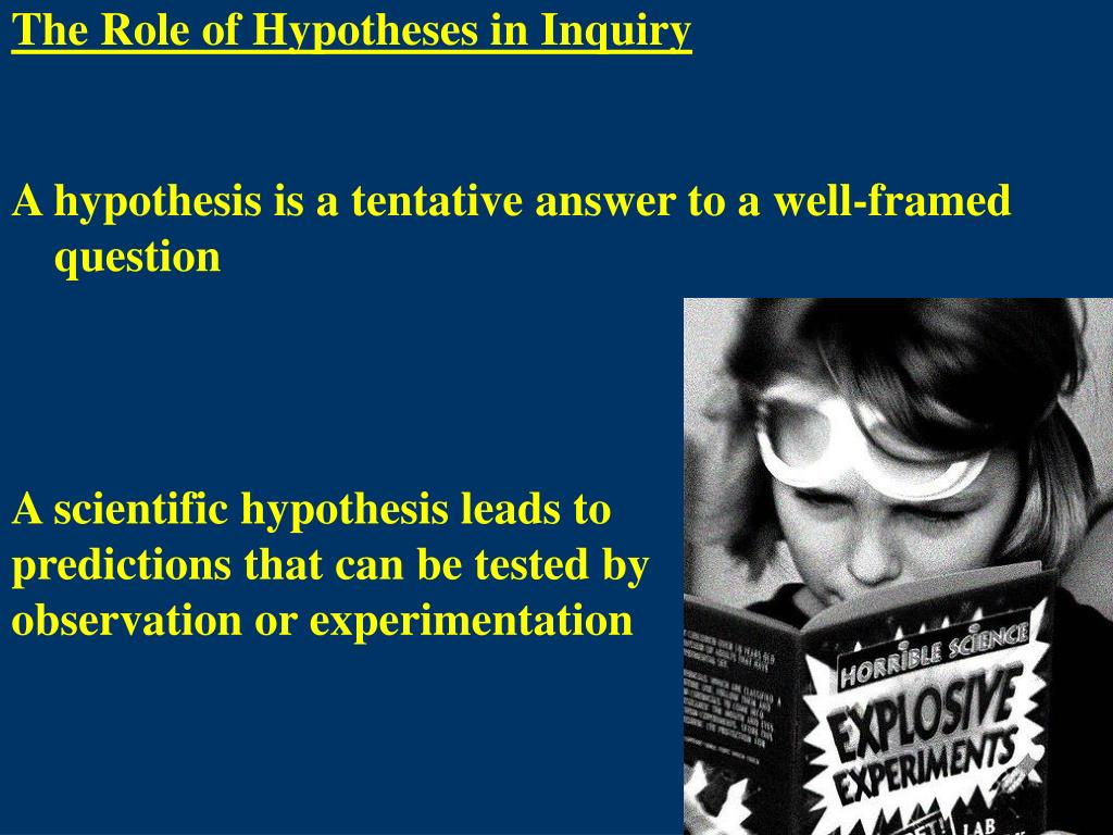 The Role of Hypotheses in Inquiry