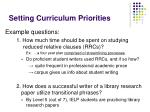 setting curriculum priorities