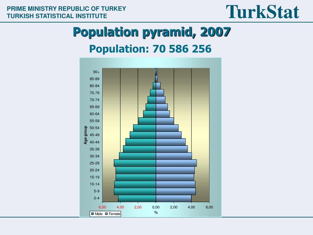 Population pyramid, 2007