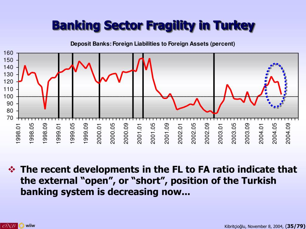 Banking Sector Fragility in Turkey