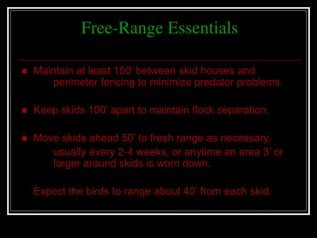Free-Range Essentials