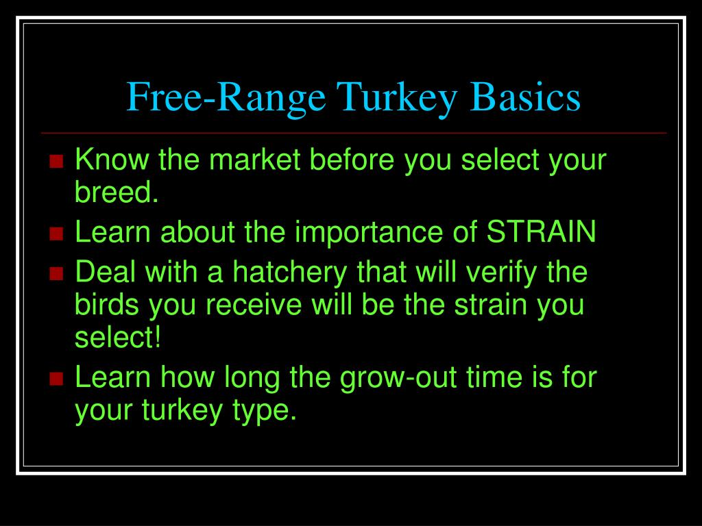 Free-Range Turkey Basics