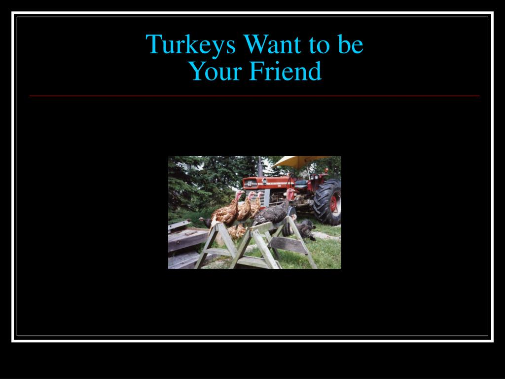 Turkeys Want to be