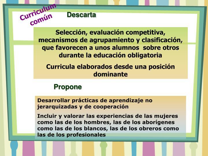 Curriculum común